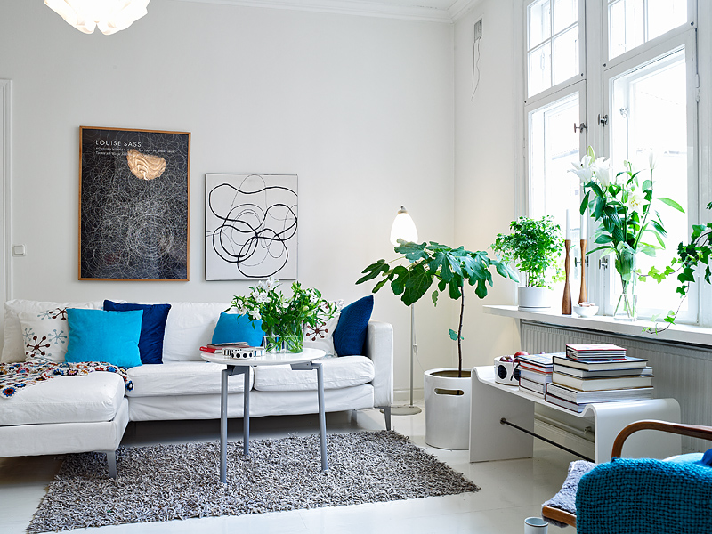 Plant-decoration-in-living-room